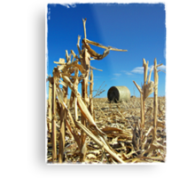 Remains of the Harvest Metal Print