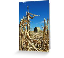 Remains of the Harvest Greeting Card