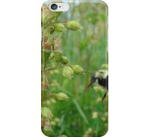 Nature - Bee iPhone Case/Skin