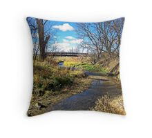Banks of Skunk Creek Throw Pillow