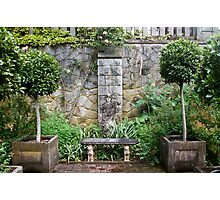 Bench and Topiary Photographic Print