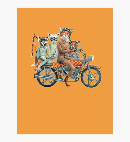 Fox Ride Photographic Print