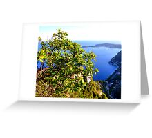 The View From Eze Greeting Card