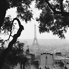 Eiffel Tower from Montmartre by Tribble