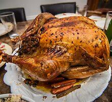 thanksgiving turkey dinner by Alexandr Grichenko