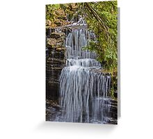 REDREAMING CASCADES Greeting Card