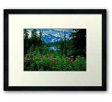 Cascade Reflection Framed Print
