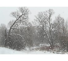 Crazy Winter Snow Storm  Photographic Print