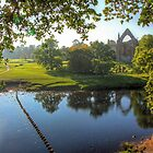 Bolton Abbey 2 by Colin  Williams Photography