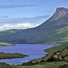 Stac Pollaidh Panorama by David Alexander Elder