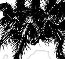 Vector tarantula spider Sticker