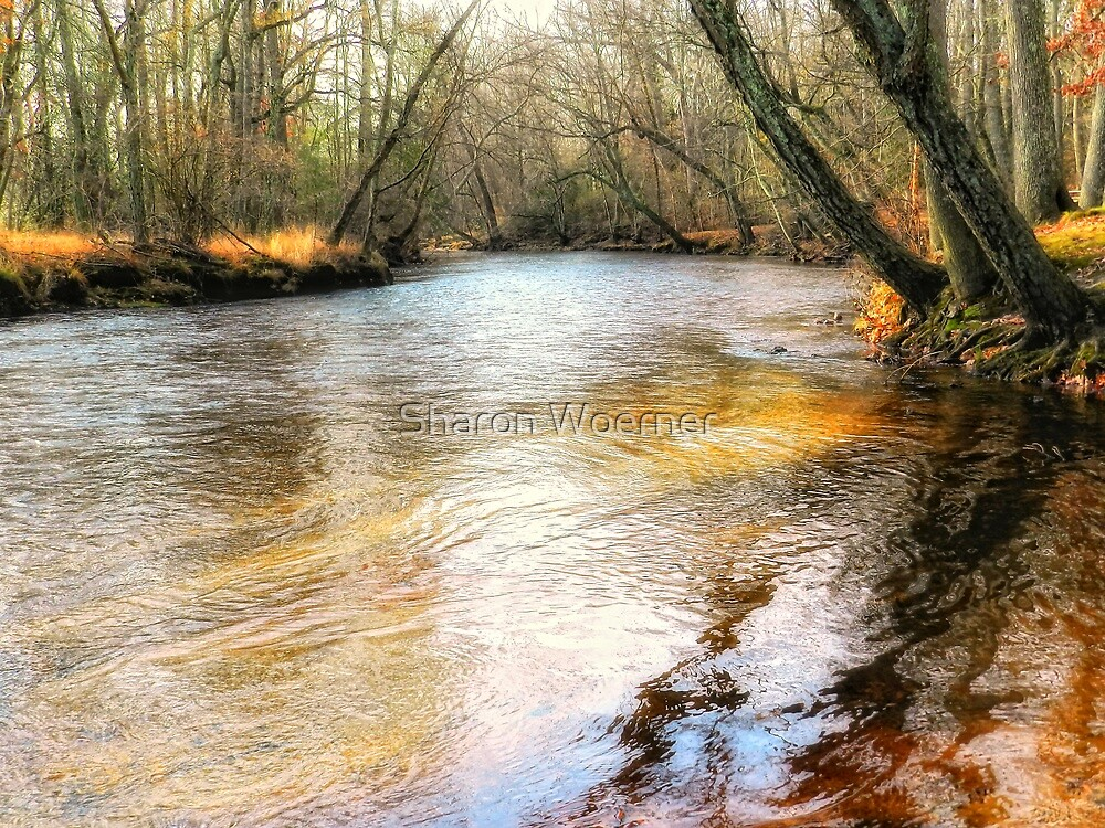 Down By The Creek by Sharon Woerner