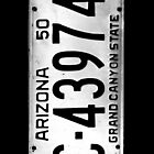 arizona license plate by tinncity