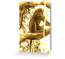 SMALL MAN OF BORNEO Greeting Card