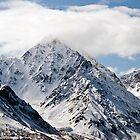 Alaska 2013 by Caren della Cioppa