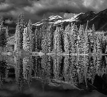 Pyramid Lake by Andrew Dickman