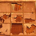 Rustic Broken Windows by Tamarra