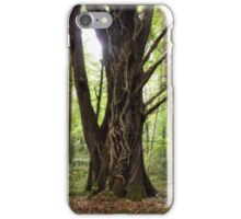 Sunlight Tree, Galway iPhone Case/Skin