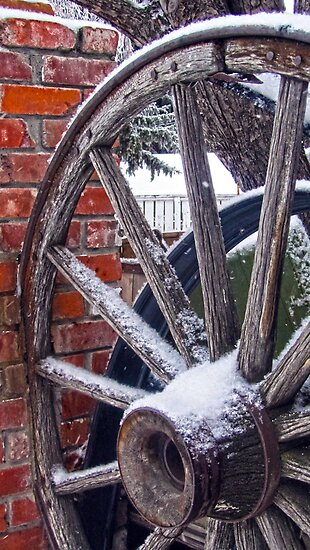 Wagon Wheel by Julia Milner