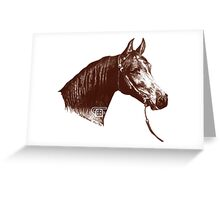 Red Frontier Arabian Horse Drawing 1985 Greeting Card