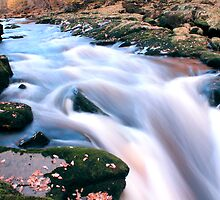 Strid, Bolton Abbey UK by photographylife