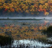 Clayton Lake At Daybreak by Carolyn  Fletcher