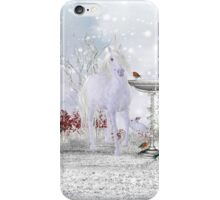 Winter Unicorn, Rabbit and Robin iPhone case iPhone Case/Skin