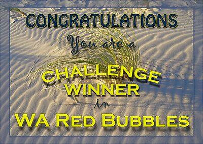 WA Red Bubbles Challenge Winner 2 by pennyswork