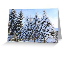 Garden in Winter Greeting Card