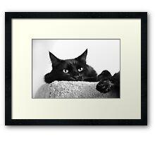 Pooh Bear in Black & White Framed Print