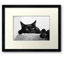Pooh Bear in Black & White Framed Print