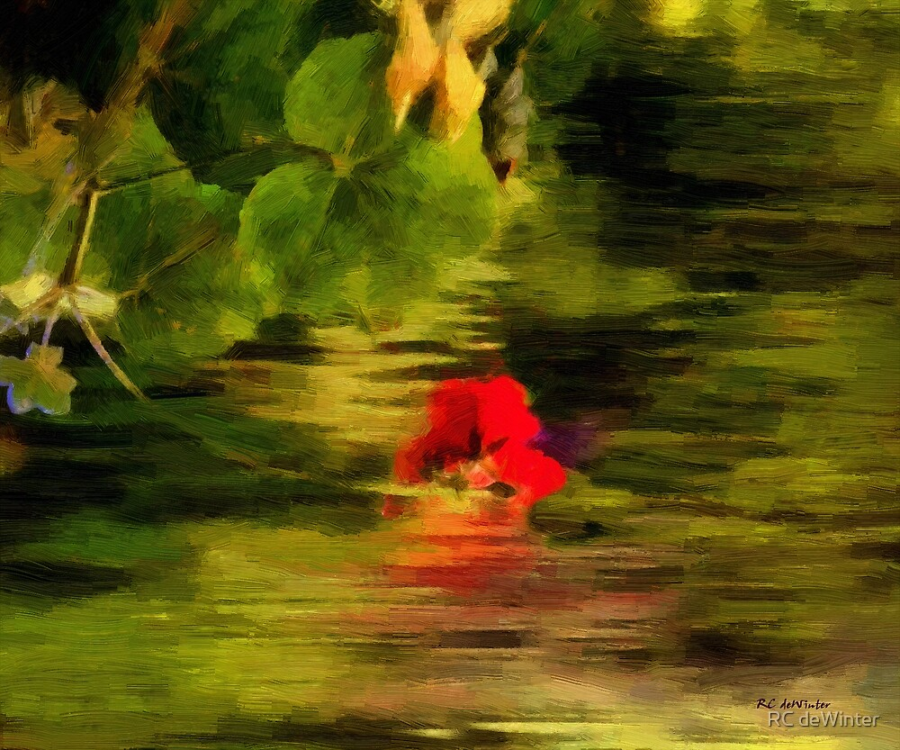 Scarlet Sinking into Sunset by RC deWinter