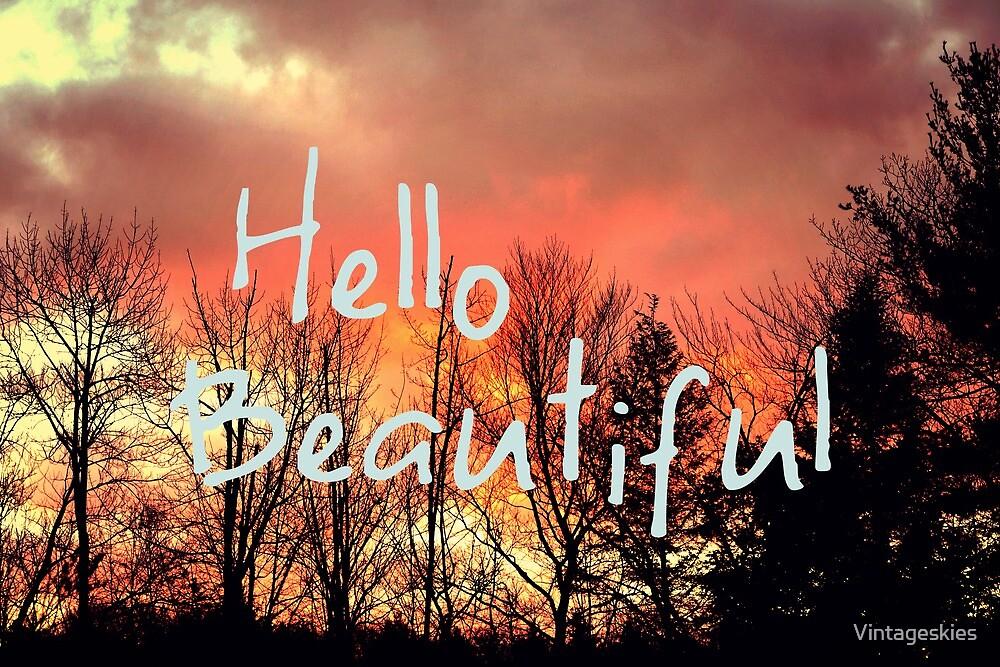 Hello Beautiful  by Vintageskies