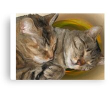 Sandy and Buster Brown Sleeping Canvas Print