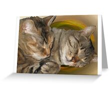 Sandy and Buster Brown Sleeping Greeting Card