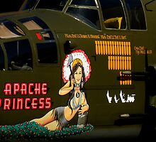 Apache Princess by artisandelimage