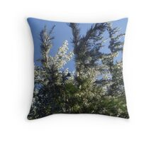 Pine tree with a touch of snow Throw Pillow
