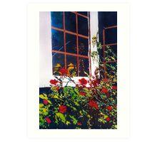 Backyard Roses Art Print