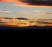 brilliant night sky  by bundug