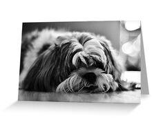 Sad Puppy Greeting Card