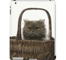 CAT IN A BASKET iPad Case/Skin