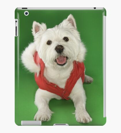 Photo of a White Terrier Dog Dressed in a Red Coat iPad Case/Skin
