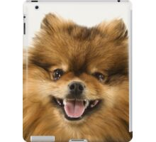POMERANIAN SMILING iPad Case/Skin