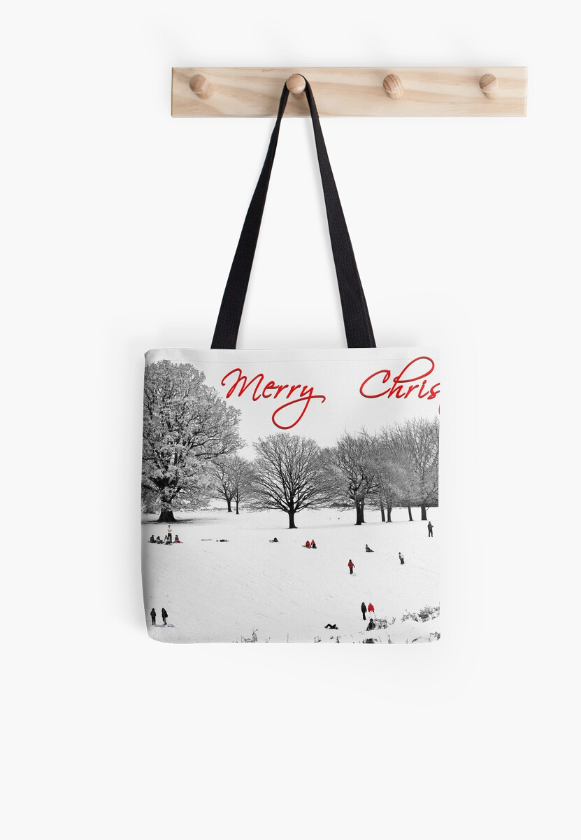 Christmas Sledging by Patricia Jacobs CPAGB LRPS BPE4