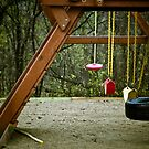 Empty Playground by Sharlene Rens