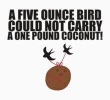 Coconuts Do Not Migrate by LeaGerard