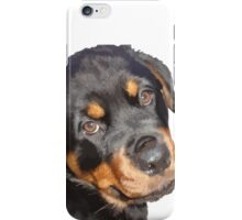 Female Rottweiler Puppy Making Eye Contact Vector Isolated iPhone Case/Skin