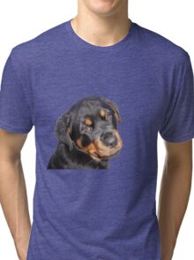 Female Rottweiler Puppy Making Eye Contact Vector Isolated Tri-blend T-Shirt