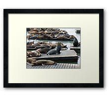 King of the Sea Framed Print