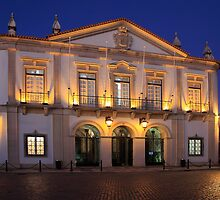 Nighttime At Faro City Hall by manateevoyager